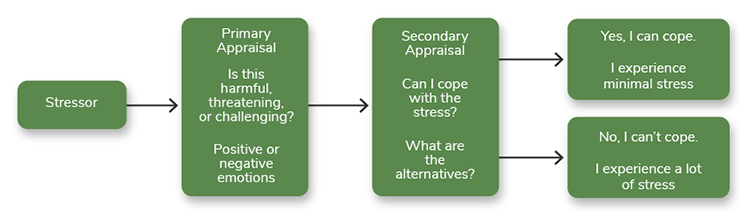 "The figure outlines of Richard Lazarus's theory of stress, coping, and adaptation. The theory starts with a stressor, which leads to a primary appraisal (""Is this harmful, threatening, or challenging?"") and positive or negative emotions. This leads to a secondary appraisal, ""Can I cope with the stress?"" and ""What are the alternatives?"" This can lead to two answers: ""Yes, I can cope,"" with ""I experience minimal stress"" or ""No, I can't cope,"" with ""I experience a lot of stress."""