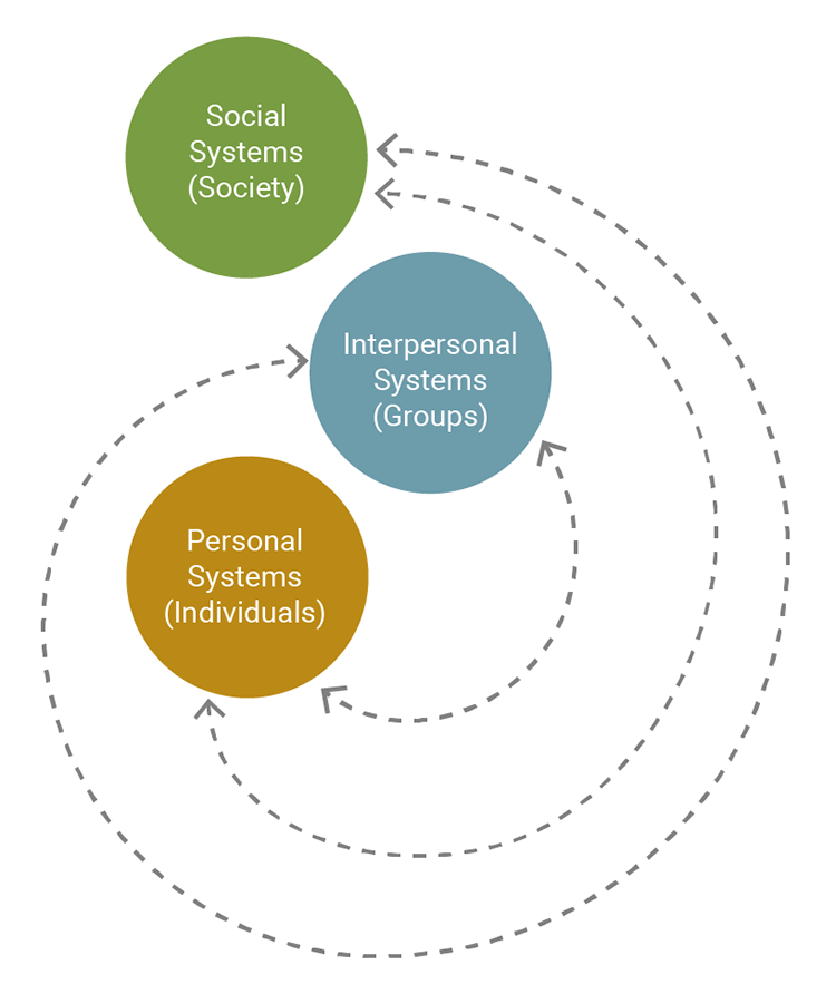 The figure presents Imogene King's theory of goal attainment, showing the relationship among social systems (society), interpersonal systems (groups), and personal systems (individuals).