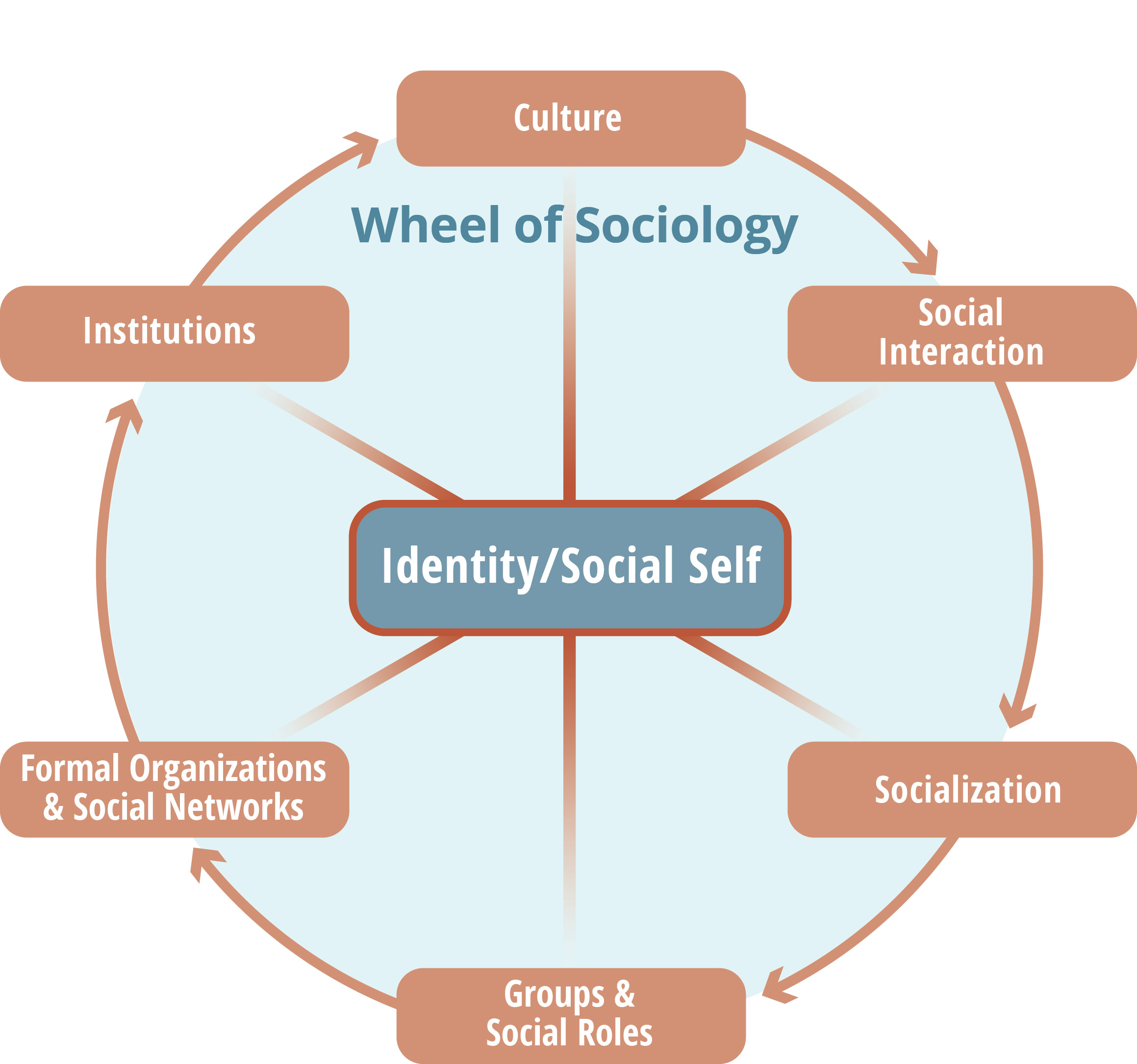 diagram of cultures society sociology